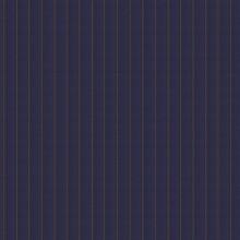 Gilet luxury blu riga scuro riga larga 3D